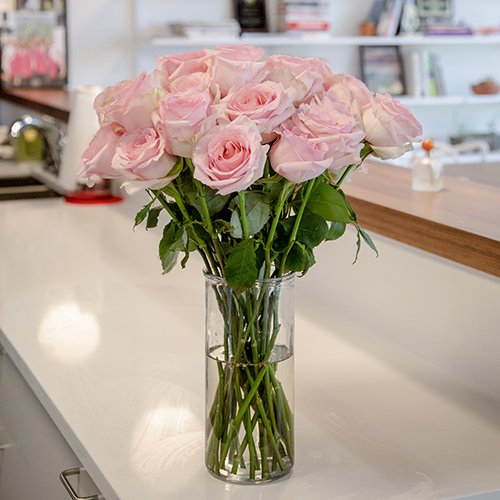 Fresh European Cut Light Pink Roses For Your House