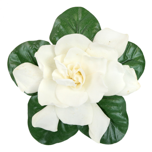 Fresh Gardenia Wedding Flower