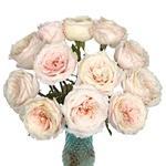 Ginger Cream Garden Wholesale Roses In a vase