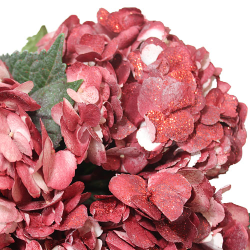 Glitzy Red Airbrushed Hydrangea Wholesale Flower Up close