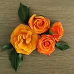 Golden Melon Spray Rose Flaylay