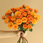 Golden Melon Spray Wholesale Rose Bunch in a hand