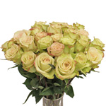 Green Fashion Wholesale Roses In a vase