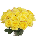 Hot Merengue Wholesale Roses In A Vase