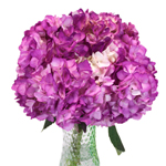 Hydrangea Berry Airbrushed Flower in a Vase