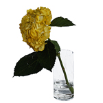 Bronze Yellow Enhanced Hydrangea Wholesale Flower In a Vase