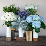 Coastal Vibes Hydrangea Wholesale Flower in a Vase