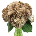 Golden Wedding Anniversary Airbrushed Hydrangea Wholesale Flower In a vase