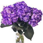 Grape Purple Airbrushed Hydrangea Flower in a Vase