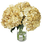 Khaki Airbrushed Hydrangea Wholesale Flower In a vase