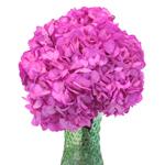 Magenta Enhanced Wedding Flowers in a Vase