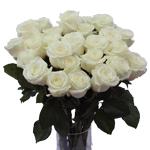 Innocence White Wholesale Roses In a vase