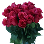 Janeiro Dark Pink Wholesale Roses In a vase