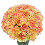 Komachi Fiesta Peachy Yellow and Pink Carnation Flowers In a vase