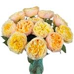Lemon Chiffon Garden Wholesale Roses In a vase