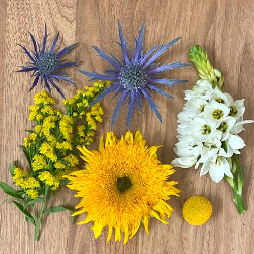 Save the Ecuadorian Field Flowers DIY Combo Box