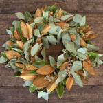 Magnolia and Seeded Eucalyptus Wholesale Greenery FlatLay