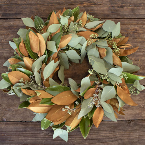 Magnolia and Seeded Eucalyptus Fresh Wreaths