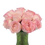 Make me Blush Garden Wholesale Roses In a vase