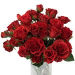 Mikado Light Red Spray Rose Bunch
