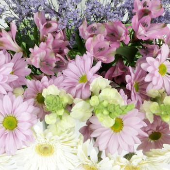 Monochromatic Lavender Combo DIY Flower Kit Up Close
