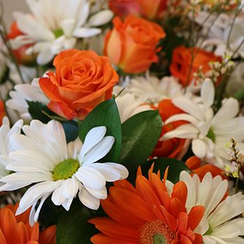 Monochromatic Orange DIY Flower Kit Up Close