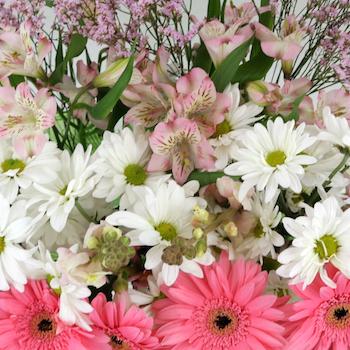 Monochromatic Pink DIY Flower Kit Up Close