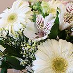Monochromatic White DIY Flower Kit Up Close