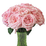 Naturally Pink Garden Wholesale Roses In a vase