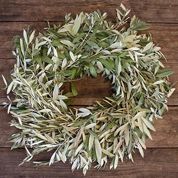 Olive Branch Wreaths