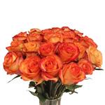 Orange Sunset Fidji Wholesale Roses In a vase