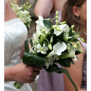 Orchid and Mini Calla Wedding Bouquet in hand