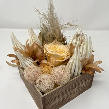 Naturally Nude Dried Flower Arrangement
