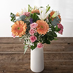 Mother\\\'s Day Gerberas Assorted and Solids