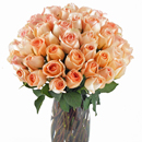 Valentine's Day Flower Gift Passion Arrangement