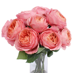 Pink Antique Garden Wholesale Roses In a vase