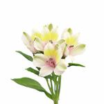Pink Forest alstroemeria Wholesale Flower Stem