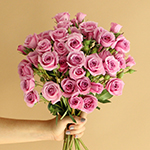 Pinky Lavender Spray Wholesale Rose Bunch in a hand