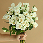 Princess Ivory Cream Wholesale Rose Bunch in a hand