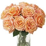 Princess Peach Garden Wholesale Roses In a vase