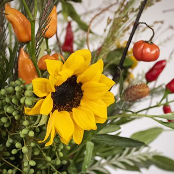 Chili Pepper Fall Flower Pack