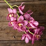 Hot Pink Cymbidium Bulk Orchid Flower