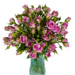 Purple Sky Berry Pink Wholesale Roses In a vase