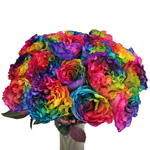Rainbow Ruffles Garden Wholesale Roses In a vase