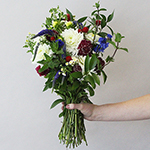 Red White Blue Wildflower Bunch in a hand