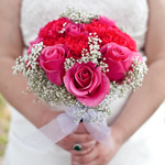 Wholesale Roses and Carnations In hands