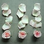 Roses and Petals Light Pink DIY Flower Kit Flatlay