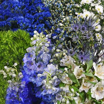 Royal Blue Textured Filler DIY Flower Kit Up Close
