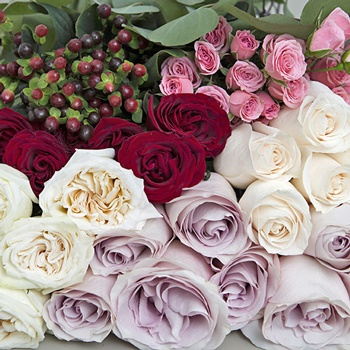 Royal Romantic DIY Flower Kit Up Close