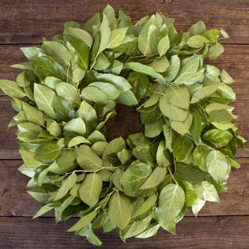 Fresh Salal Wreaths